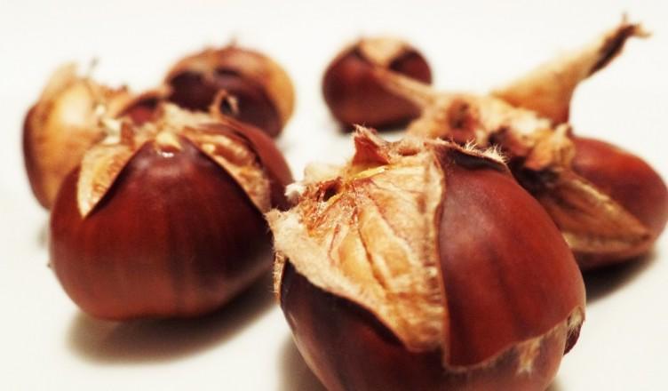 chestnut-498833_1280