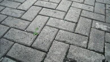 Betonová zámková dlažba