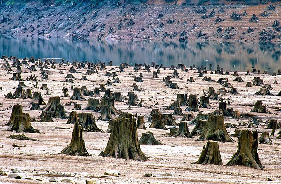 pollution-trash-destruction-overdevelopement-overpopulation-overshoot-11